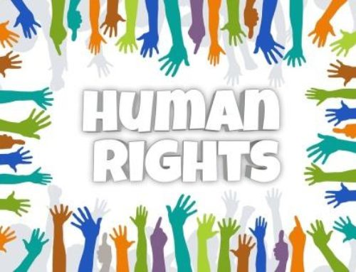 NAM highlights the need for Human Rights Education