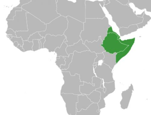 Regional cooperation in the Horn of Africa