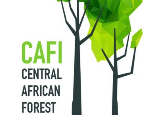 Role of Central African Forest Initiative (CAFI) in Forest Conservation